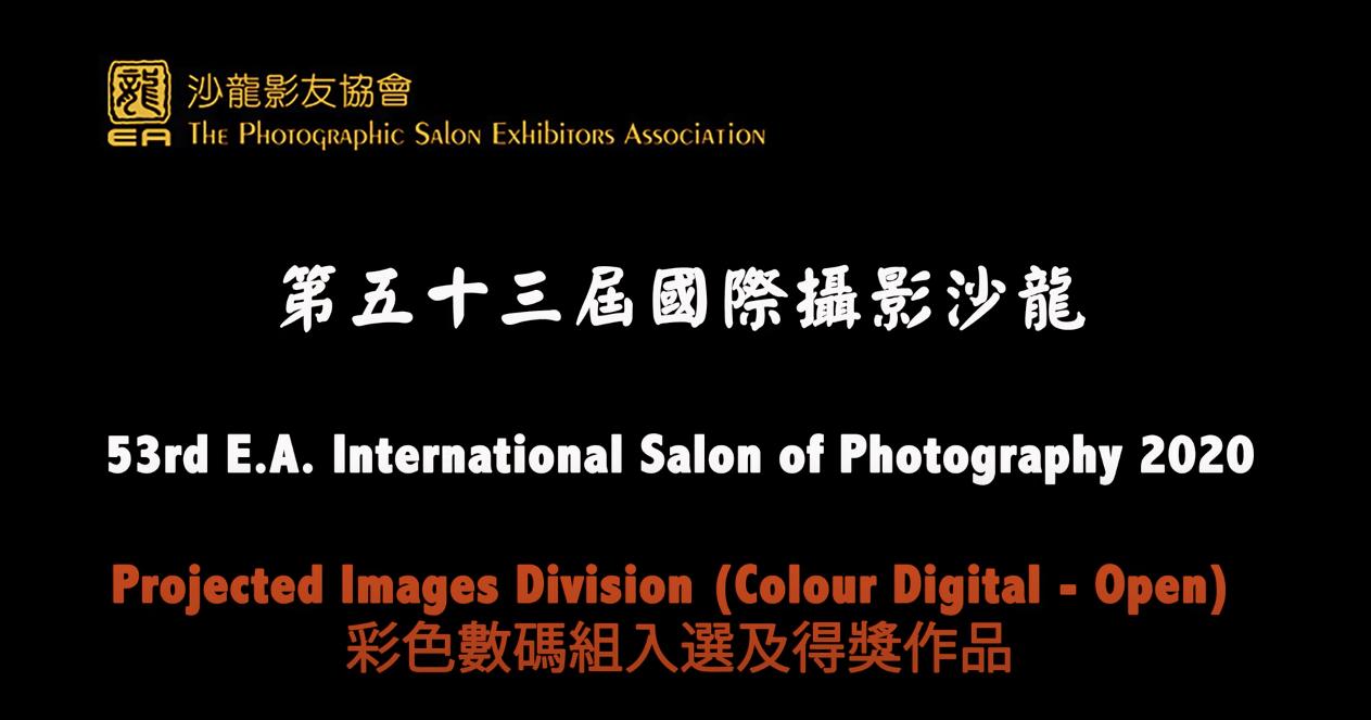 2020年度「第五十三屆國際攝影沙龍」比賽得獎作品